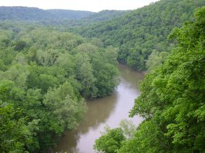 Green River above Mammoth Cave, Kentucky: Click to enlarge.